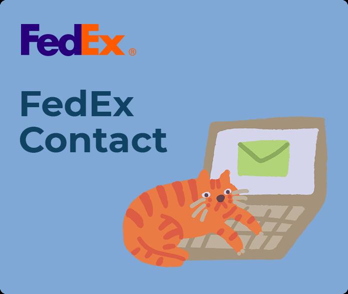 fedex contact