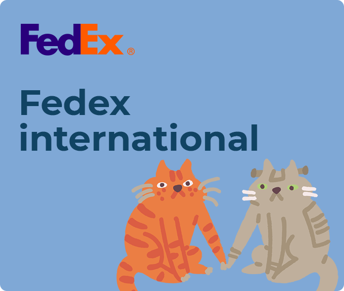 fedex international